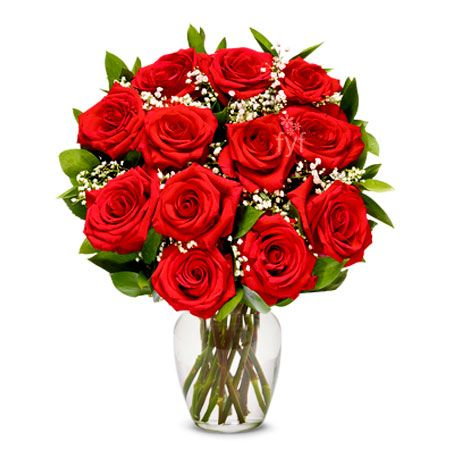 Long Stem Red Roses - send flowers to pakistan