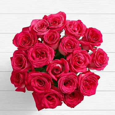 20 Pink Roses of Love-1 - sendflowers.pk