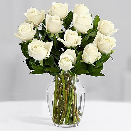 One Dozen Long Stemmed White Roses Sendflowers To Pakistan