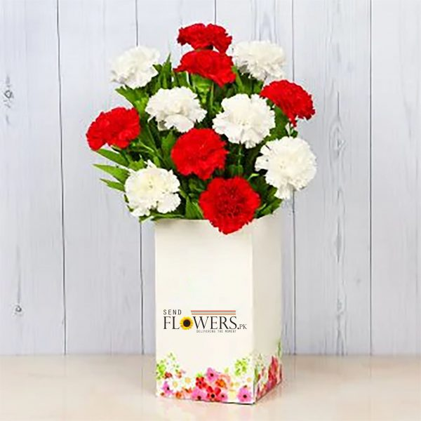 Listen To The Carnations - SendFlowers.pk