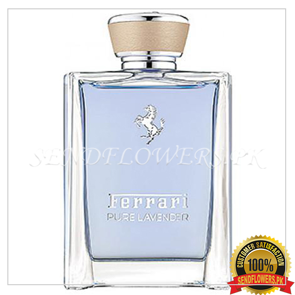 Bliss Ferrari Pure (Wild) Lavender - SendFlowers.pk