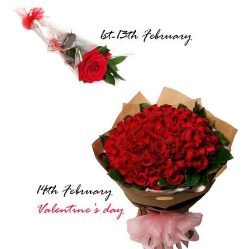 14 Love Rose Messages-valentines day flower delivery_SendFlowers.pk