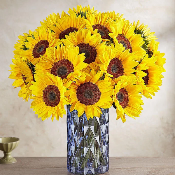 Send this Bouquet of Sunflowers on Birthday