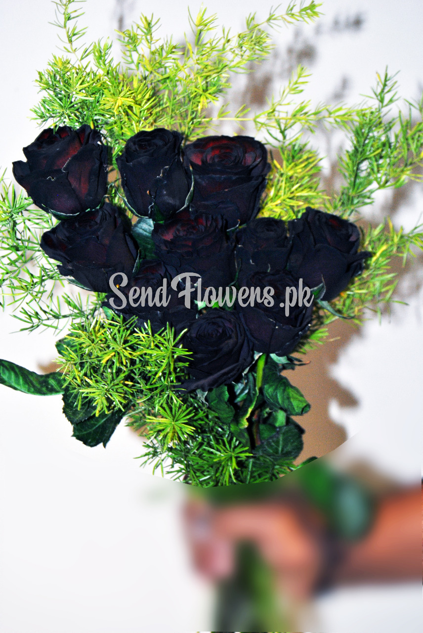 Delivery of Black Exotic Roses Bunch in Pakistan