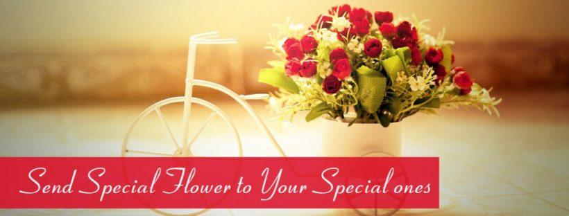 send premium flowers & chocolates to Pakistan