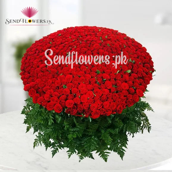 1000 roses bouquet in Pakistan - Huge roses bouquet on Valentine's day